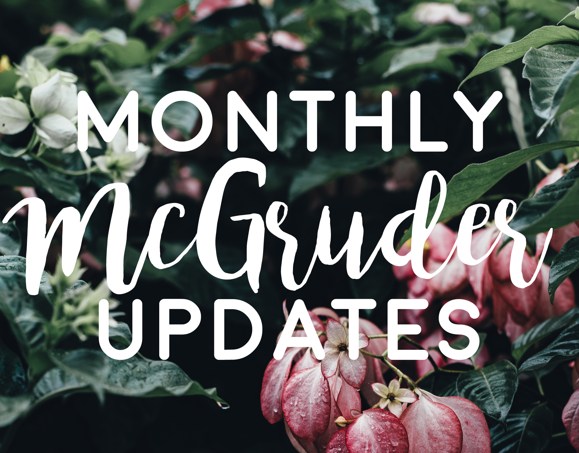 Monthly McGruder Updates via Wit & Travesty